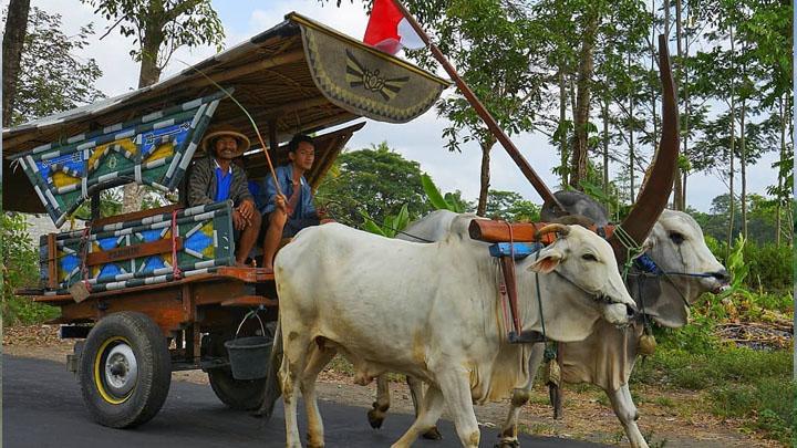 Alat Transportasi Tradisional Cikar